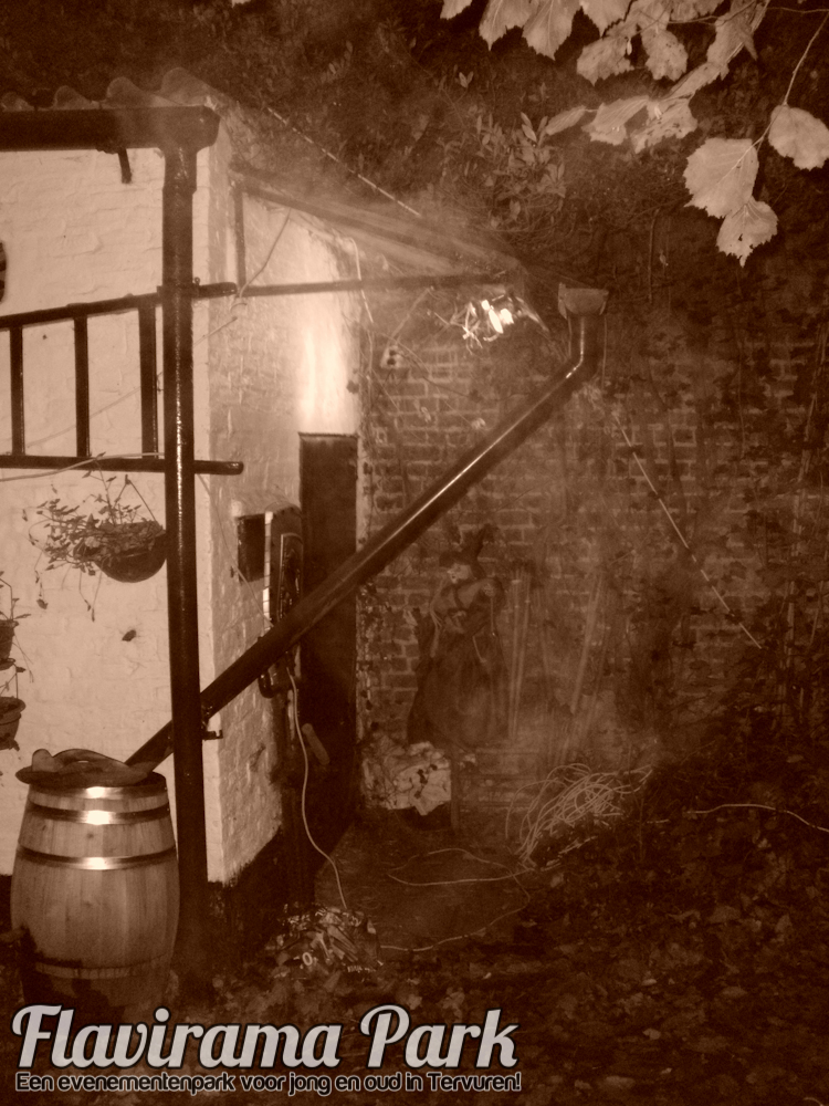halloween-2010-104