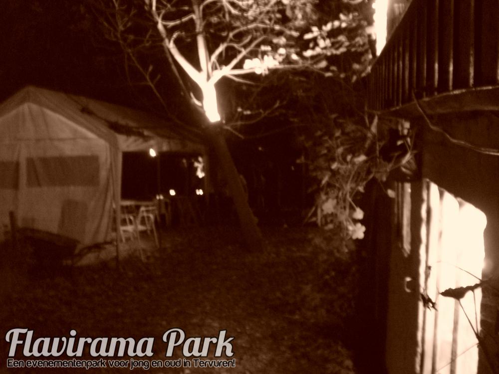 halloween-2010-53