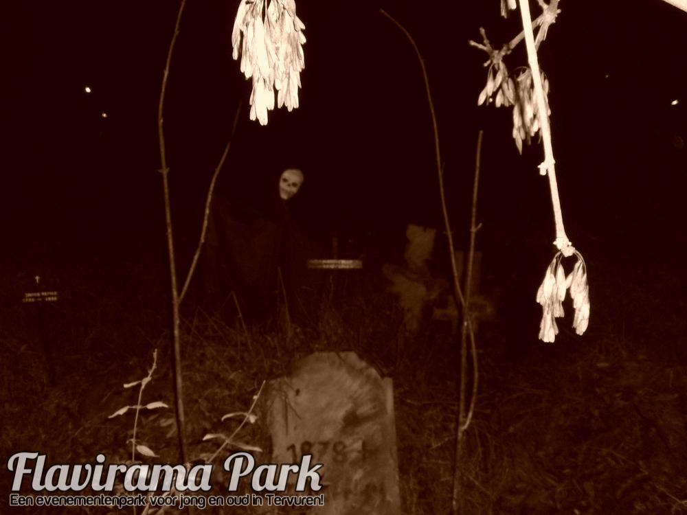 halloween-2010-74