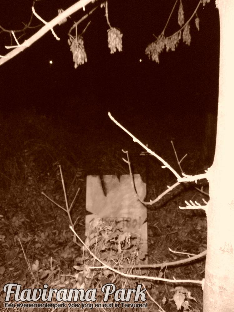 halloween-2010-75