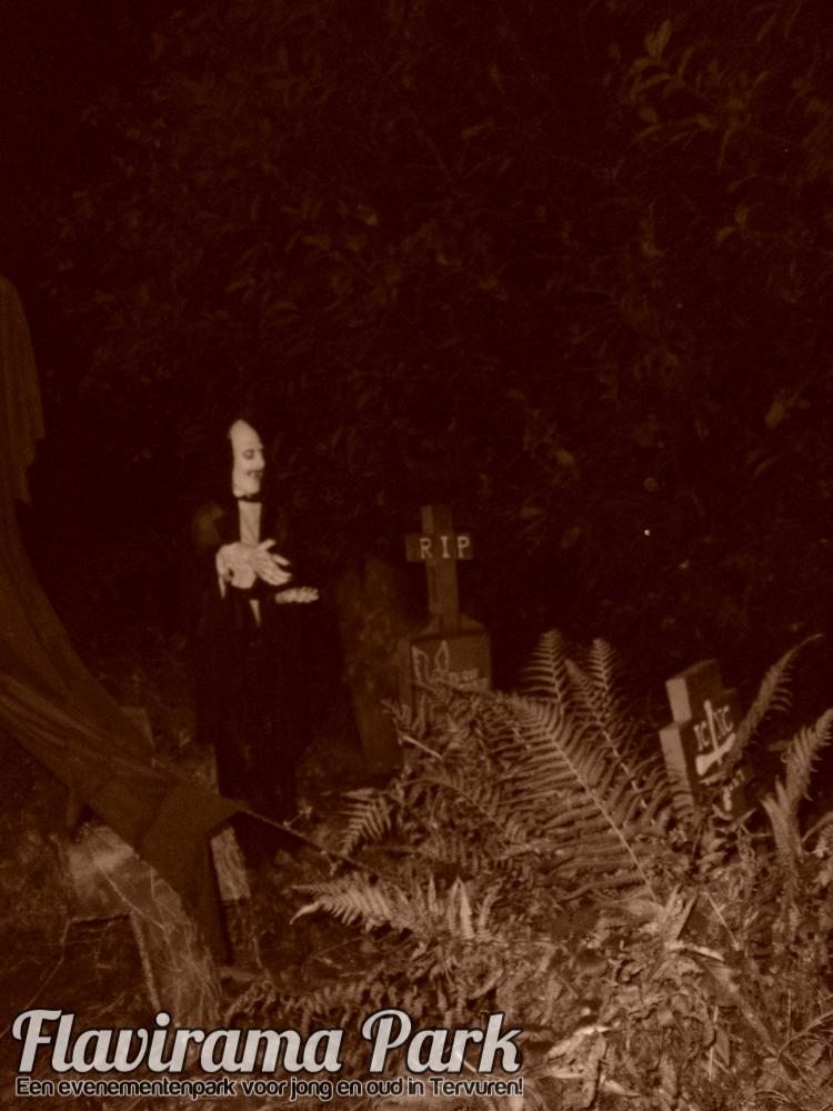 halloween-2010-76