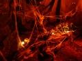 flavirama-samhain-8small
